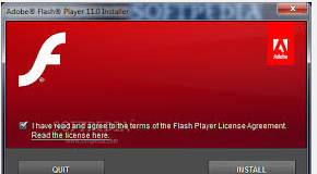 flash player for windows